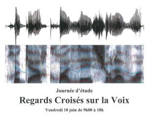 Regards croisés sur la voix